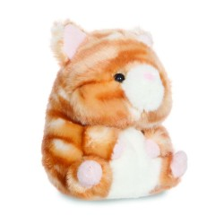 Poppy Orange Tabby Cat